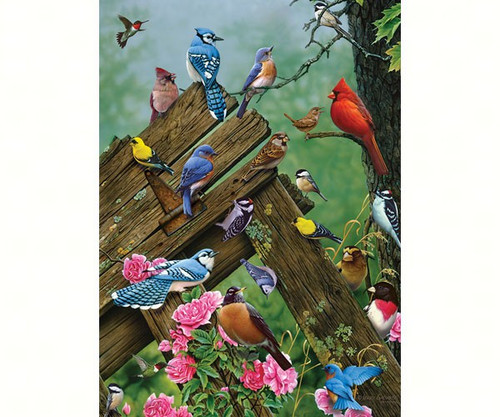 OUTSET MEDIA GAMES - Birds of the Forest - 1000 Piece Jigsaw Puzzle (OM80086) 625012517812