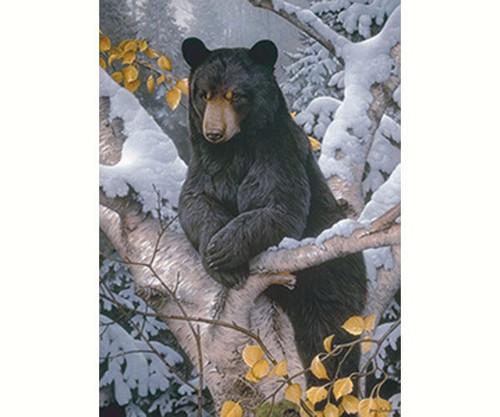 OUTSET MEDIA GAMES - Black Bear - 1000 Piece Jigsaw Puzzle (OM80099) 625012518024