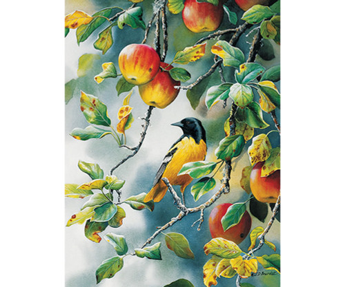 OUTSET MEDIA GAMES - Northern Oriole - 1000 Piece Jigsaw Puzzle (OM80156) 625012801560
