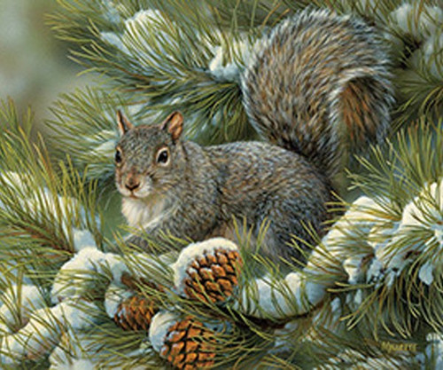 OUTSET MEDIA GAMES - Gray Squirrel - 275 Large Piece Tray Jigsaw Puzzle (OM88016) 625012543484
