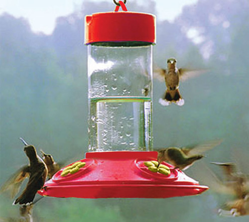 SONGBIRD ESSENTIALS - Dr. JB's Clean Feeder - Hummingbird Feeder - 16 oz (Red with Yellow Flowers) (SE6018) 645194060180