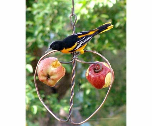 SONGBIRD ESSENTIALS - Johnny Apple Orioles Fruit and Jelly Bird Feeder (SEHHAPPL) 645194000995