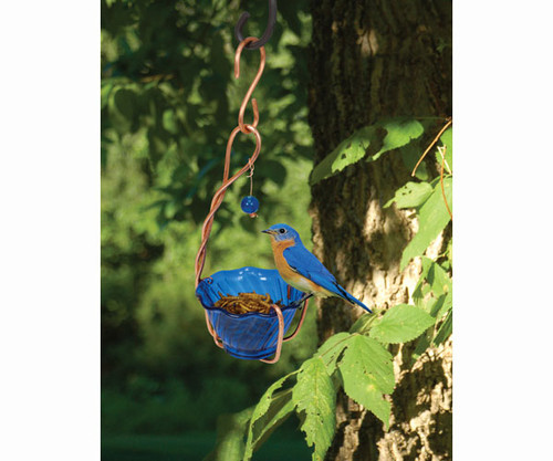 SONGBIRD ESSENTIALS - Copper Bluebird Mealworm Bird Feeder (SEHHBBMW) 645194770249