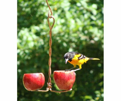 SONGBIRD ESSENTIALS - Double Apple Orioles Fruit and Jelly Bird Feeder (SEHHDBAP) 645194001039