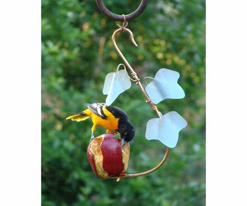 SONGBIRD ESSENTIALS - Copper Ivy Fruit Cafi Orioles Fruit and Jelly Bird Feeder (SEHHFRCF) 645194001084