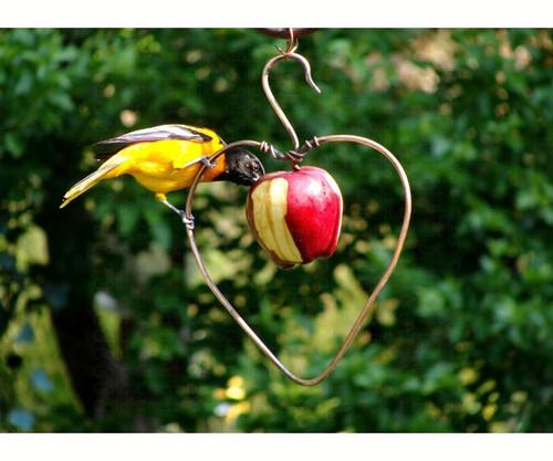 SONGBIRD ESSENTIALS - Heart Oriole Fruit and Jelly Bird Feeder (SEHHHAPL) 645194001138