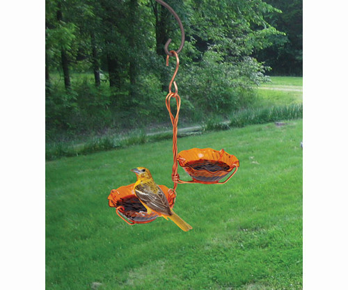 SONGBIRD ESSENTIALS - Copper Oriole Jelly Feeder - Double Cup SEHHORDC 645194770409