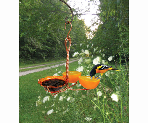 SONGBIRD ESSENTIALS - Copper Oriole Fruit and Jelly Bird Feeder - Triple Cup SEHHORFJ 645194770393