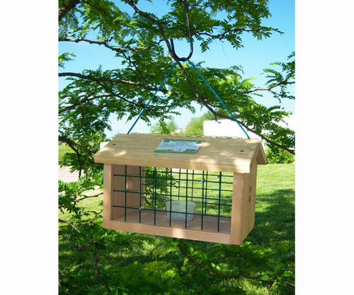 SONGBIRD ESSENTIALS - Protected Bluebird Jail Bird Feeder SESC1040 645194104006