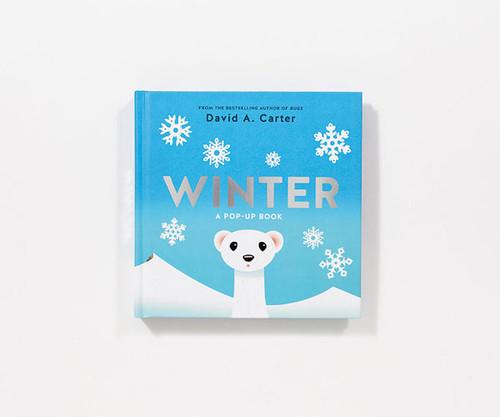 HACHETTE BOOKS - Winter A Pop-up Book (ABR1419718236) 9781419718236
