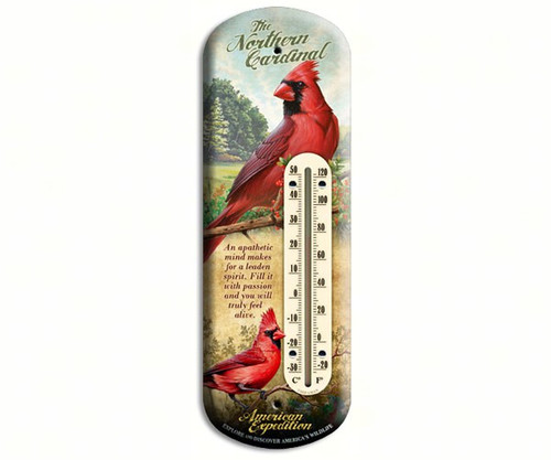 AMERICAN EXPEDITION - Cardinal Tin Thermometer (AMEBTHM128) 659356020967