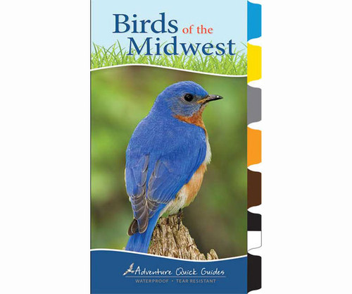 ADVENTURE KEEN - Birds of the Midwest (Adventure Quick Guide) Book (AP34066) 9781591934066