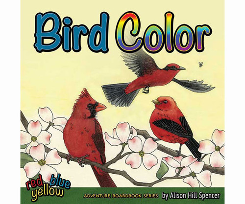 ADVENTURE KEEN - Bird Color Kids Book (AP34288) 9781591934288