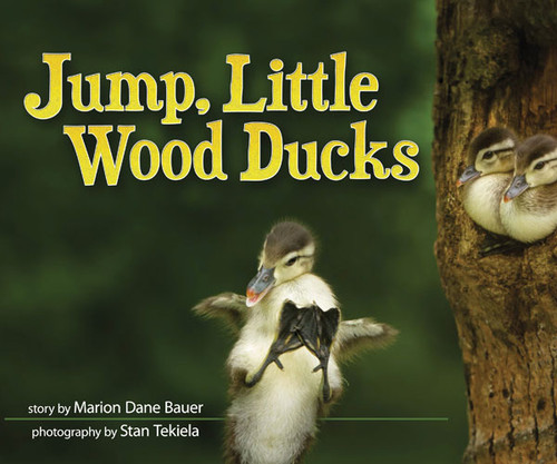 ADVENTURE KEEN - Jump, Little Wood Ducks Book (AP35858) 9781591935858