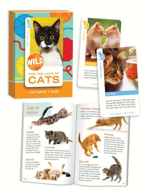 BIRD CAGE PRESS - For the Love of Cats Wild Card BCP312 804969600833