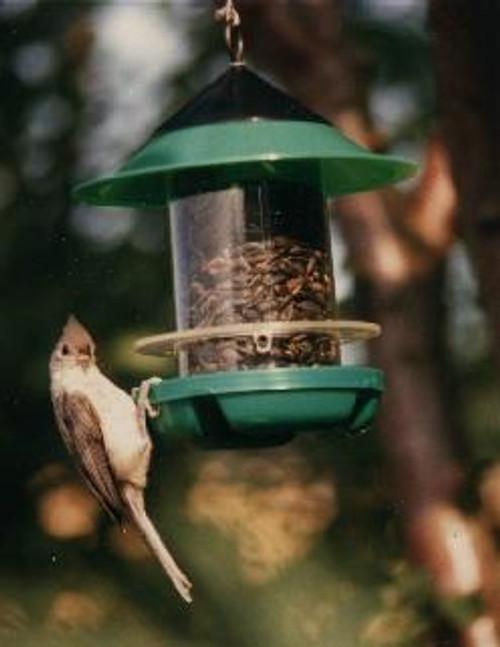 BECKS - Chickadee Bird Feeder (BECKSCKD) 079023000052