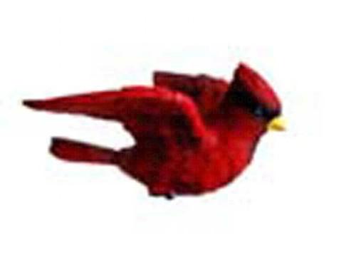 CLARK COLLECTION - Cardinal Window Magnet (CC52020) 816667520207