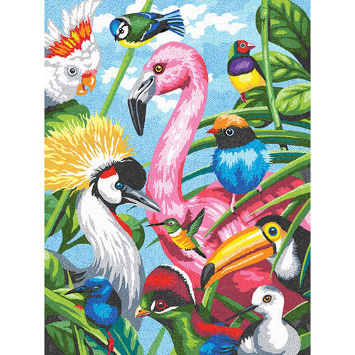 DIMENSIONS - Tropical Feathers Pencil by Number Kit (73-91497) 088677914974