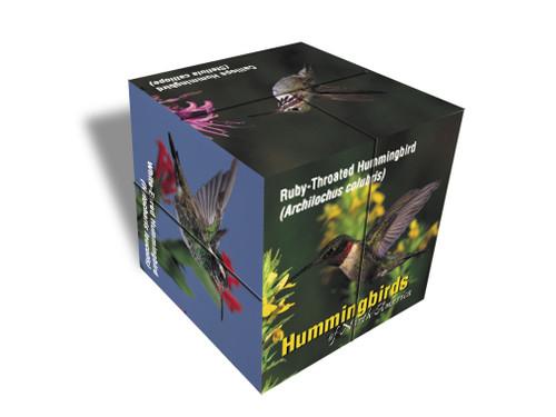 IMPACT PHOTOGRAPHICS - Hummingbird of North America - Photo Cube (IMP19PC) 802285038668
