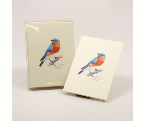 EARTH SKY + WATER - Western Bluebird - Notecards w/Envelopes (LEWERSNC104) 740620904455