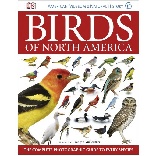 Nature, Wildlife and Audubon (Bird) Books