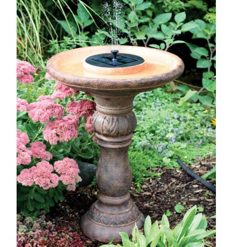 Bird Baths & Waterers