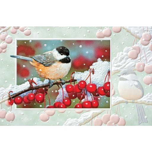 Greeting Cards - Nature, Wildlife & Audubon