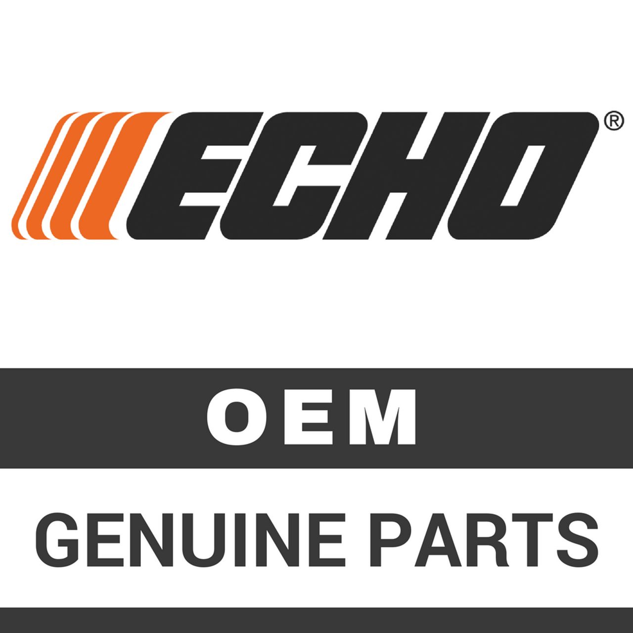 ECHO 99988803002 - DISPOSABLE MASK - 2 PACK - Image 1