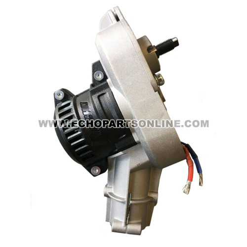 ECHO 205055001 - MOTOR AND GEAR BOX ASSY CDST - Image 1
