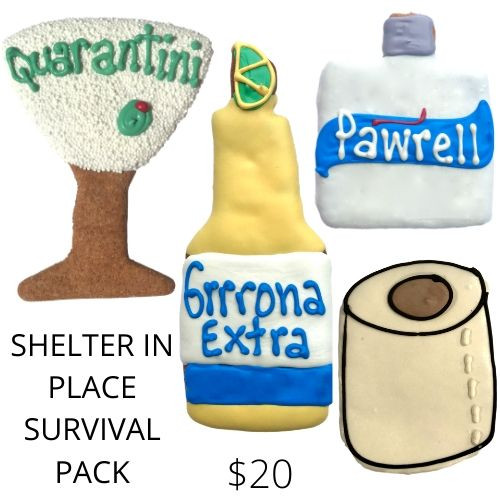 Shelter in Place Survival Kit
