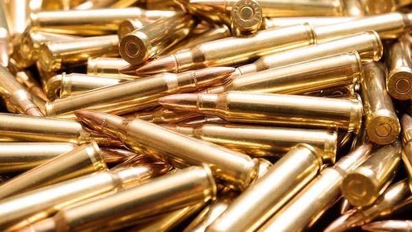 bullets600w.jpg