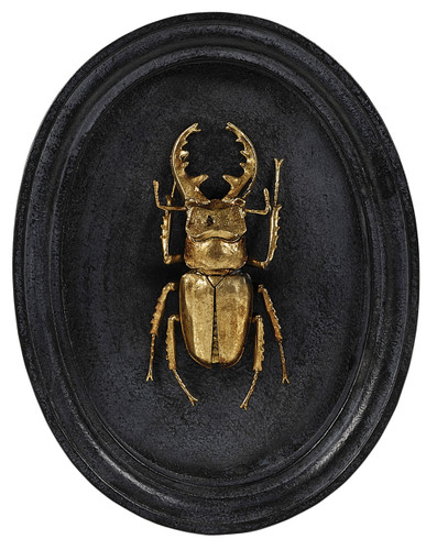 Insect Plaque (Set/3) (SDA020)