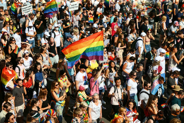 LGBTQ+ in the Pandemic