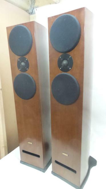 Usher CP6361 Floorstanding Speakers