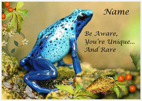 Unique and Rare Frog - Personalised