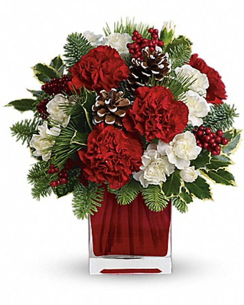Make them merry with this sweet bouquet! Red carnations and white carnations are beautifully presented in our bright red glass cube. Red carnations and white miniature carnations are accented with tips of noble fir, white pine, holly and assorted greens. Delivered in Teleflora's bright red glass cube.