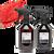 POLISHANGEL Primer Spritz & Cosmic Spritz Pro Kit