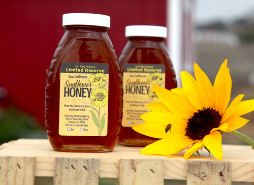 16oz Sunflower Honey