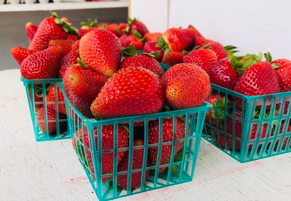 Strawberry 1-Pint Basket
