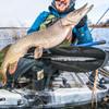 Angler Pro Carbon Snap-Button