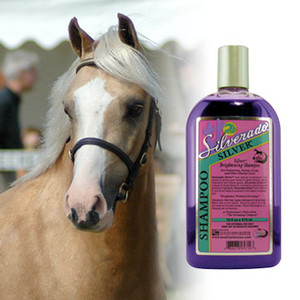 Silverado Silver Shampoo