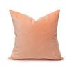 Sophie Rose Quartz Velvet Decorative Pillow - Front