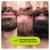 Braun BT7220 Beard Trimmer