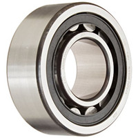 SKF Cylindrical Roller Bearing Model N209ECP