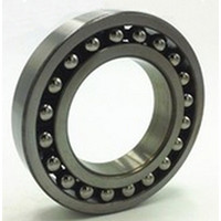 BT307 FBC New Cylindrical Roller Bearing