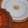 Pickard Charlotte Moss Shell Motif Saucer