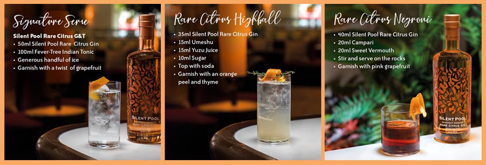 Rare Citrus Gin Cocktails