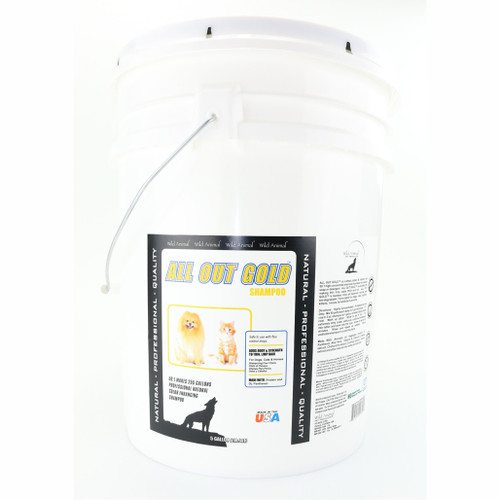 All Out Gold Shampoo 5 Gallon