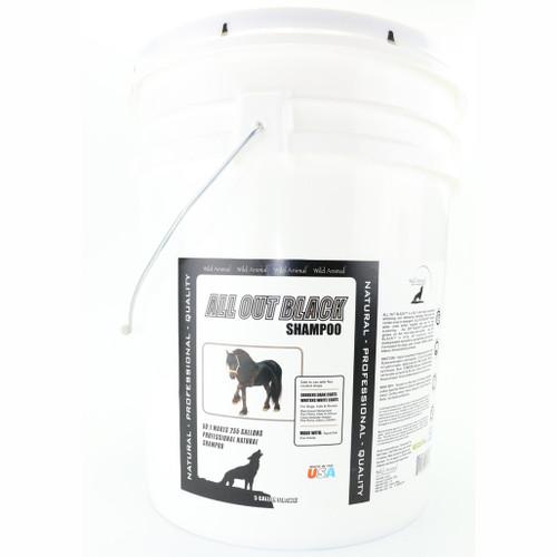 All Out Black Shampoo 5 Gallon Size
