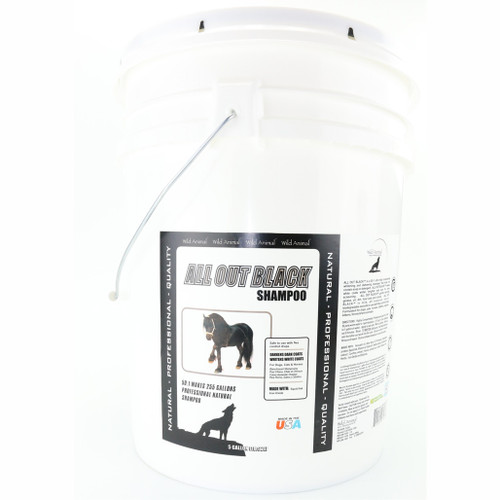 All Out Black Shampoo 5 Gallon Size